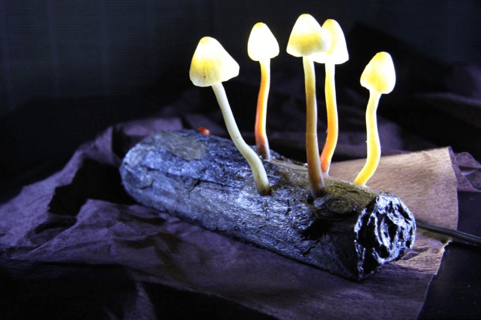 Светильники в виде грибов